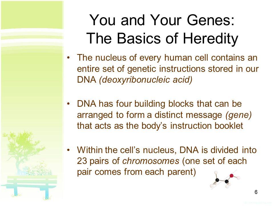 Genetics Problems Worksheet Answers Templates and Worksheets – Genetics Problems Worksheet