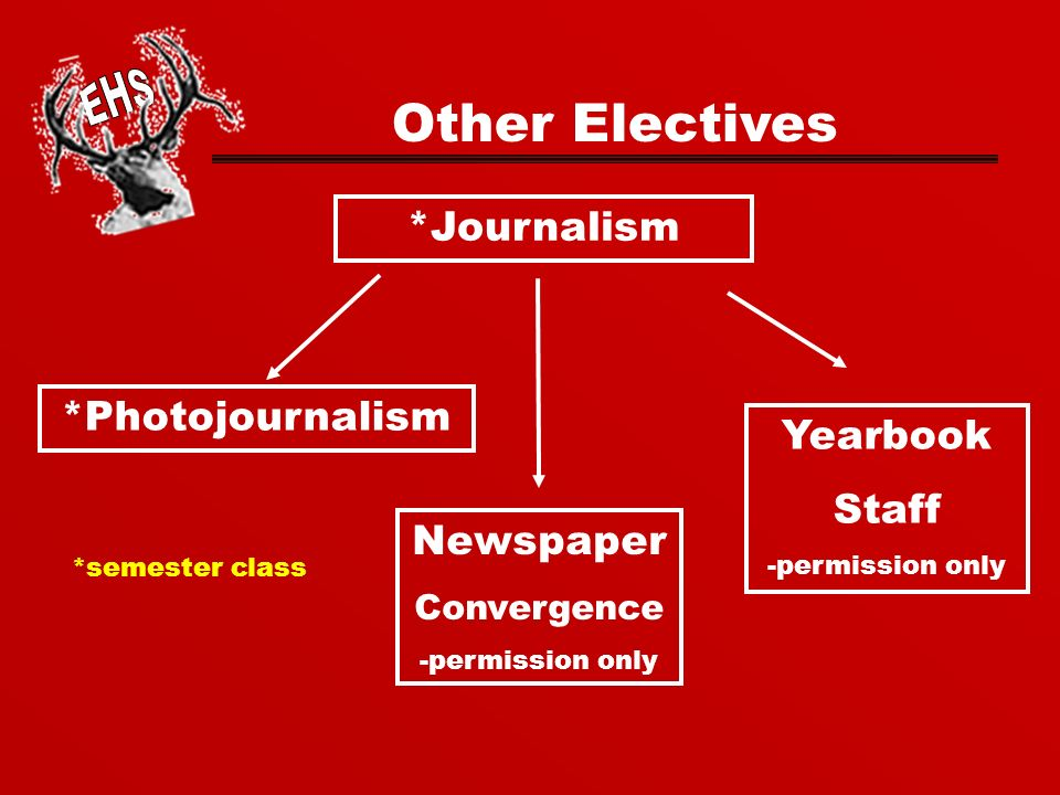 *Journalism *Photojournalism Newspaper Convergence -permission only Yearbook Staff -permission only Other Electives *semester class