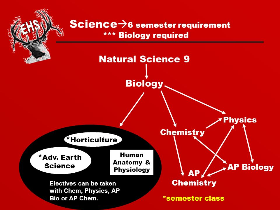Science  6 semester requirement *** Biology required Natural Science 9 Biology Physics Chemistry AP Biology Human Anatomy & Physiology Electives can be taken with Chem, Physics, AP Bio or AP Chem.