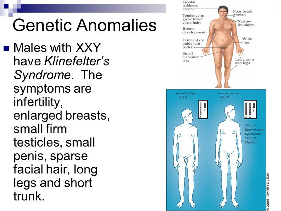 small penis symptoms