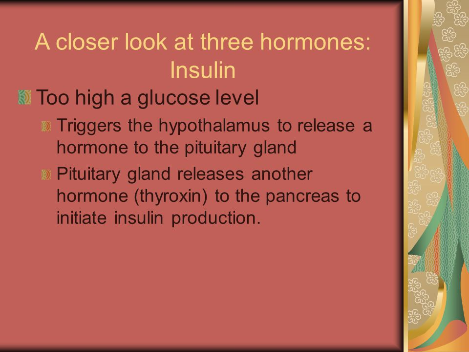 A closer look at three hormones: Insulin Too high a glucose level Triggers the hypothalamus to release a hormone to the pituitary gland Pituitary gland releases another hormone (thyroxin) to the pancreas to initiate insulin production.