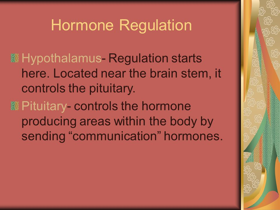Hormone Regulation Hypothalamus- Regulation starts here.