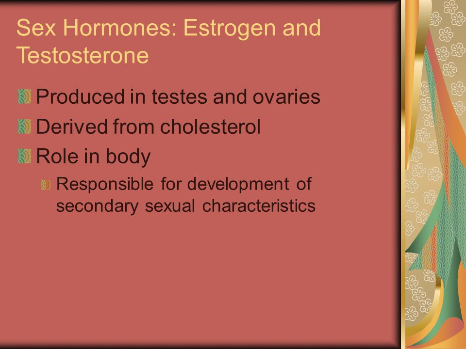 Sex Hormones: Estrogen and Testosterone Produced in testes and ovaries Derived from cholesterol Role in body Responsible for development of secondary sexual characteristics