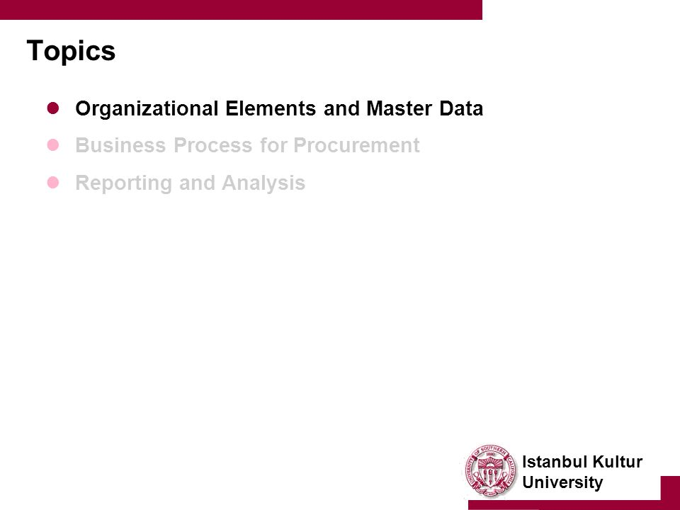 Istanbul Kultur University Topics Organizational Elements and Master Data Business Process for Procurement Reporting and Analysis