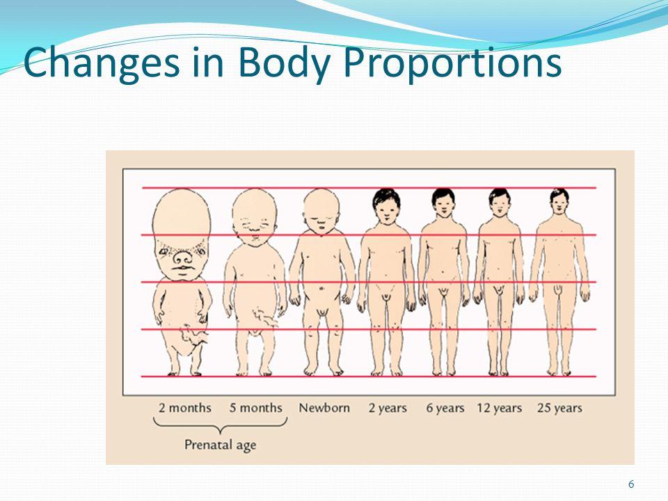 Essays On Body Image