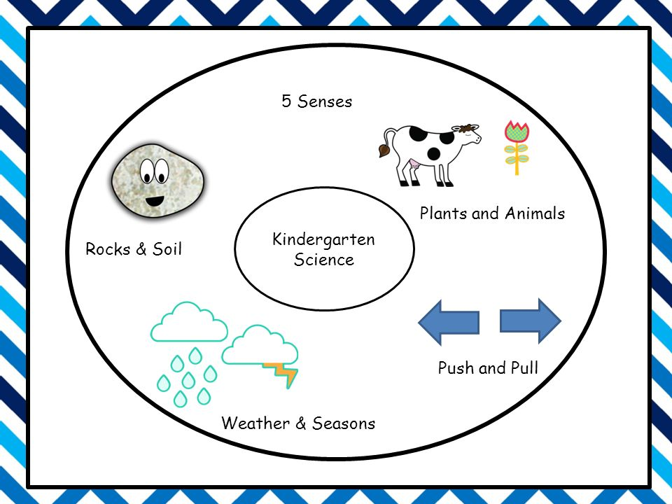 Kindergarten Science Rocks & Soil Plants and Animals 5 Senses Push and Pull Weather & Seasons