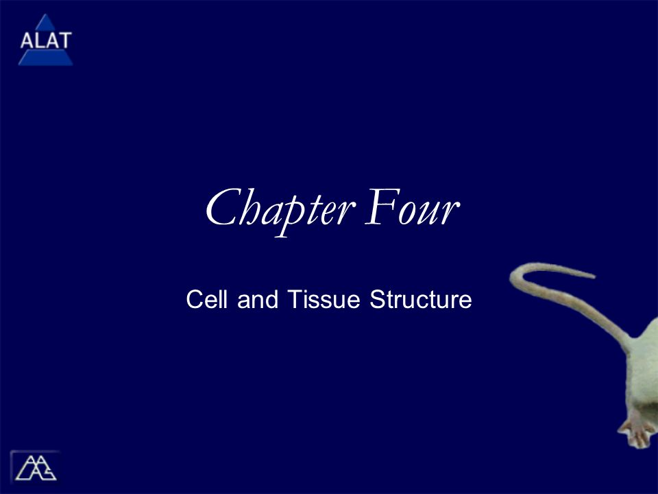 Chapter Four Cell and Tissue Structure