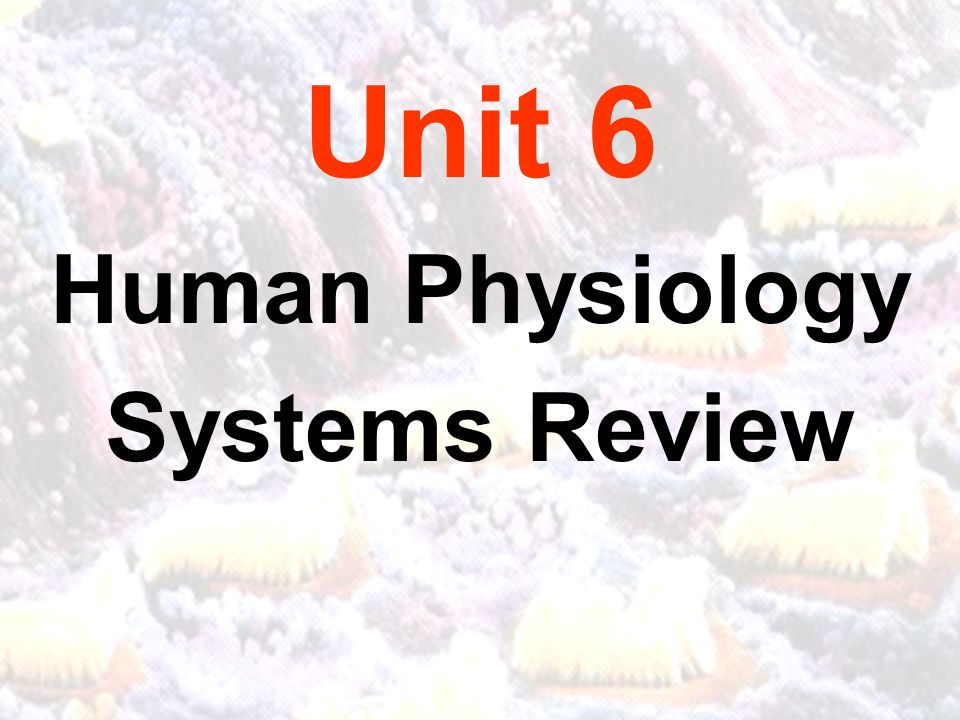 Unit 6 Human Physiology Systems Review. CALIFORNIA CONTENT STANDARDS ...