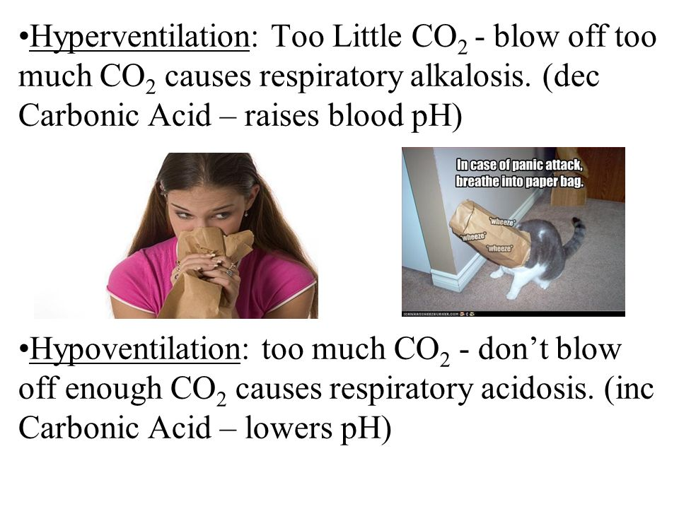Hyperventilation: Too Little CO 2 - blow off too much CO 2 causes respiratory alkalosis.