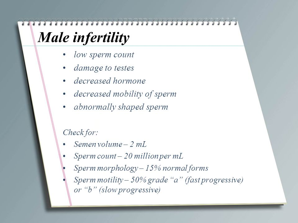 """Presentation """"SCRIBBLE PAD Reproductive System Disorders. Male ..."""