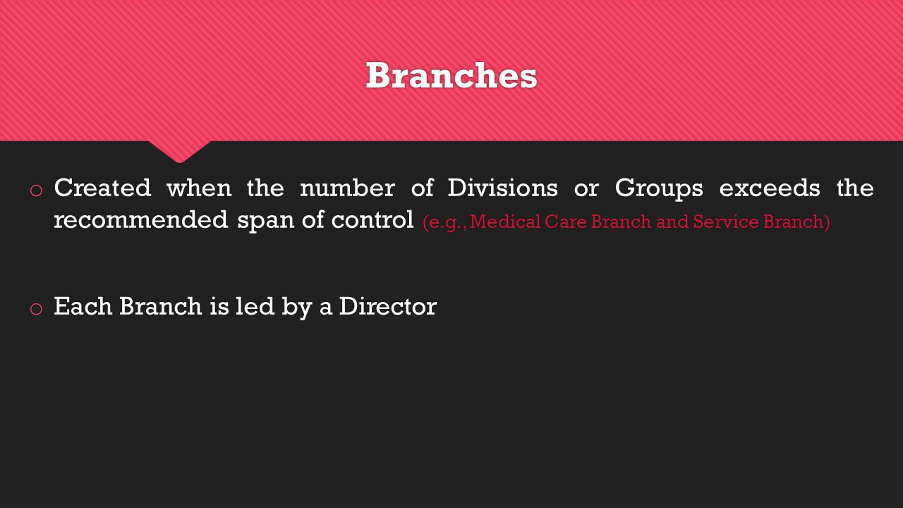 Branches o Created when the number of Divisions or Groups exceeds the recommended span of control (e.g., Medical Care Branch and Service Branch) o Each Branch is led by a Director o Created when the number of Divisions or Groups exceeds the recommended span of control (e.g., Medical Care Branch and Service Branch) o Each Branch is led by a Director