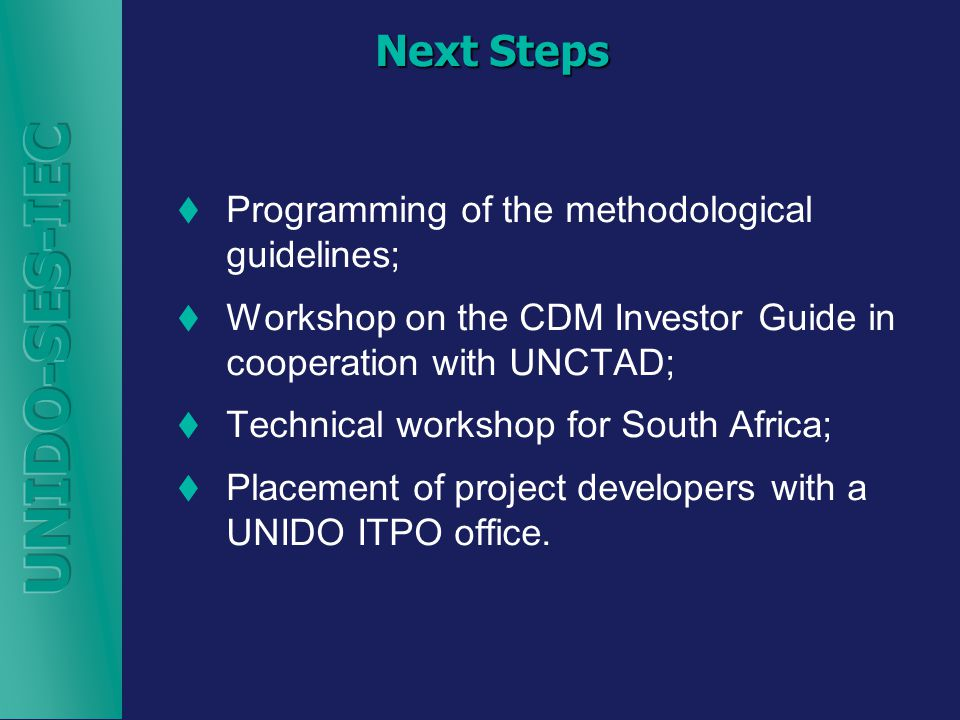 Next Steps  Programming of the methodological guidelines;  Workshop on the CDM Investor Guide in cooperation with UNCTAD;  Technical workshop for South Africa;  Placement of project developers with a UNIDO ITPO office.