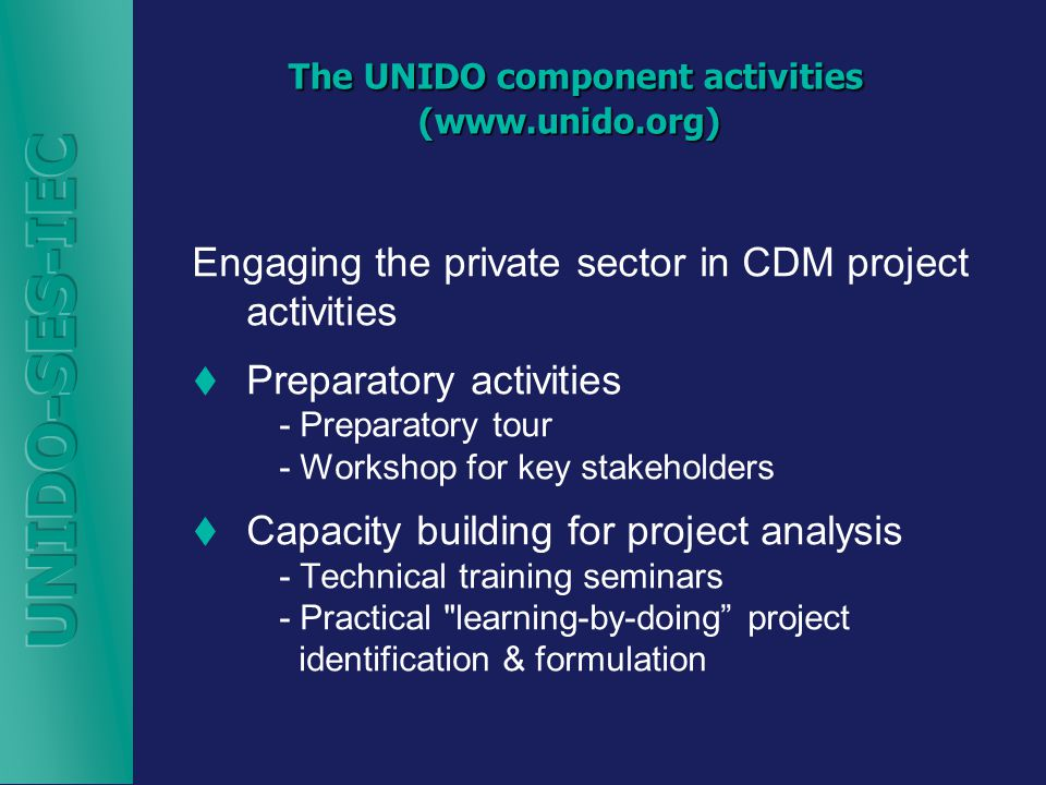 The UNIDO component activities (  The UNIDO component activities (  Engaging the private sector in CDM project activities  Preparatory activities - Preparatory tour - Workshop for key stakeholders  Capacity building for project analysis - Technical training seminars - Practical learning-by-doing project identification & formulation