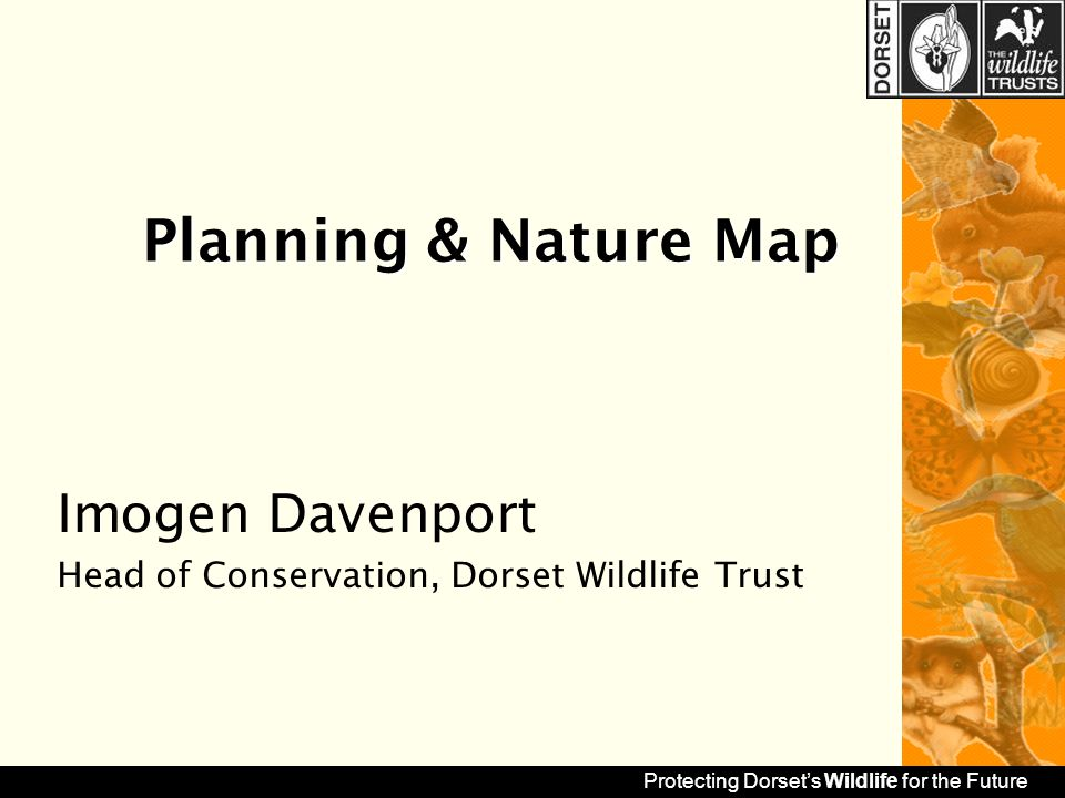 protecting dorset's wildlife for the future planning & nature map, Presentation templates
