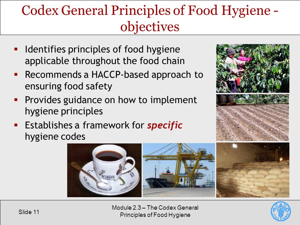Slide 11 Module 2.3 – The Codex General Principles of Food Hygiene Codex General Principles of Food Hygiene - objectives  Identifies principles of food hygiene applicable throughout the food chain  Recommends a HACCP-based approach to ensuring food safety  Provides guidance on how to implement hygiene principles  Establishes a framework for specific hygiene codes