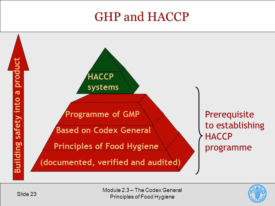 Slide 23 Module 2.3 – The Codex General Principles of Food Hygiene GHP and HACCP Programme of GMP Based on Codex General Principles of Food Hygiene (documented, verified and audited) HACCP systems Prerequisite to establishing HACCP programme Building safety into a product