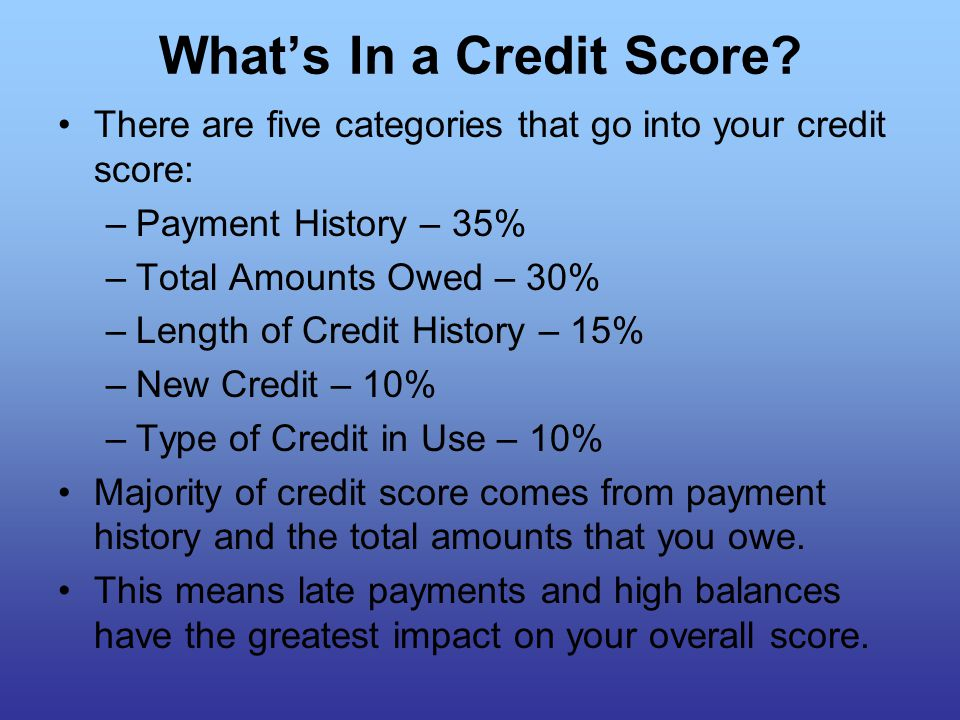 What's In a Credit Score.