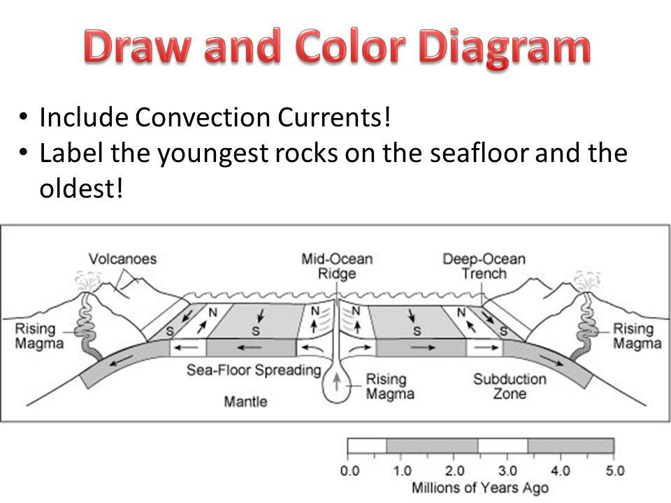 Ocean Floor Diagram To Label Schematic Wiring Diagram