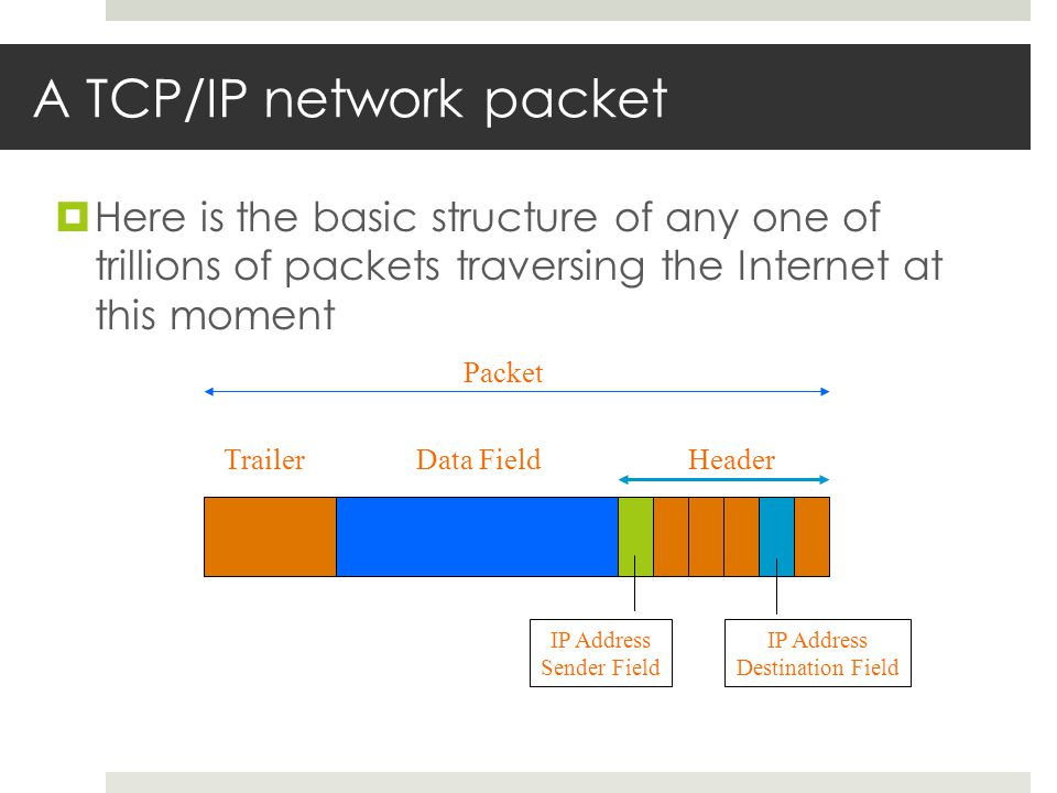 A TCP/IP network packet  Here is the basic structure of any one of trillions of packets traversing the Internet at this moment TrailerHeaderData Field IP Address Destination Field Packet IP Address Sender Field