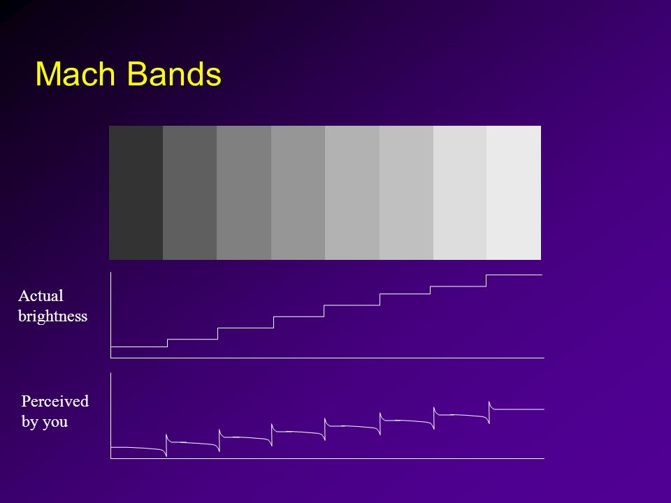 Mach Bands Actual brightness Perceived by you