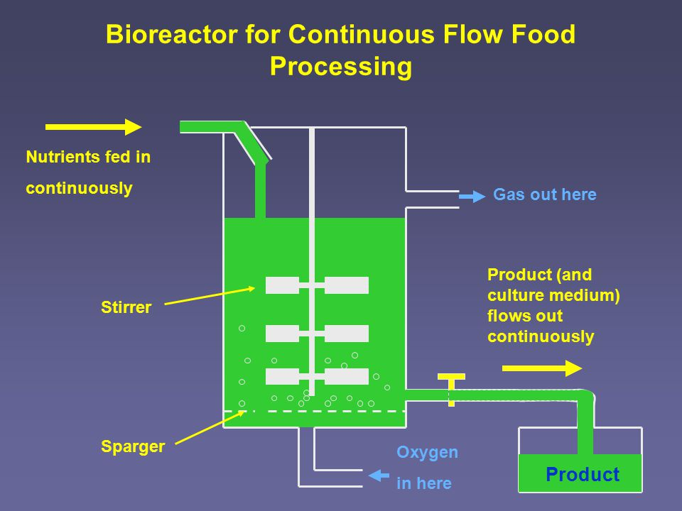 Nutrients fed in continuously Gas out here Oxygen in here Stirrer Sparger Product (and culture medium) flows out continuously Bioreactor for Continuous Flow Food Processing Product