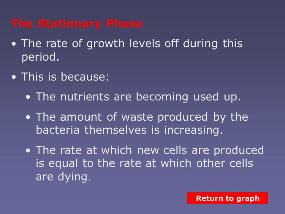 The Stationary Phase The rate of growth levels off during this period.