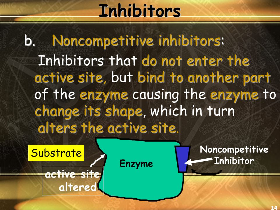 14Inhibitors b.Noncompetitive inhibitors: do not enter the active sitebind to another part enzymeenzyme change its shape alters the active site Inhibitors that do not enter the active site, but bind to another part of the enzyme causing the enzyme to change its shape, which in turn alters the active site.