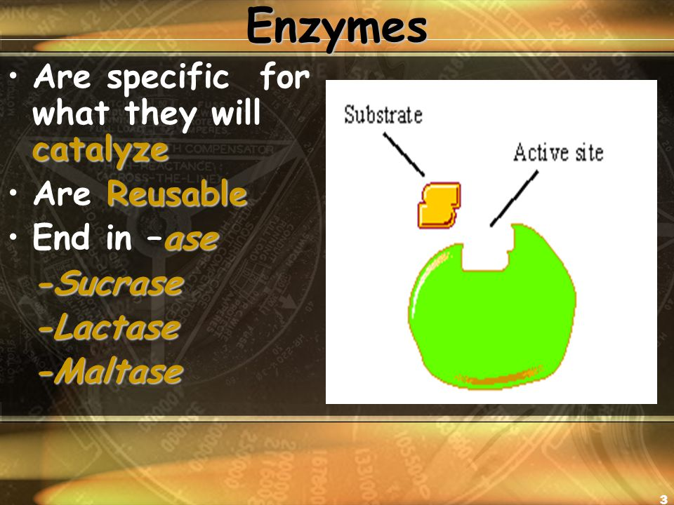 3Enzymes catalyzeAre specific for what they will catalyze ReusableAre Reusable aseEnd in –ase-Sucrase-Lactase-Maltase