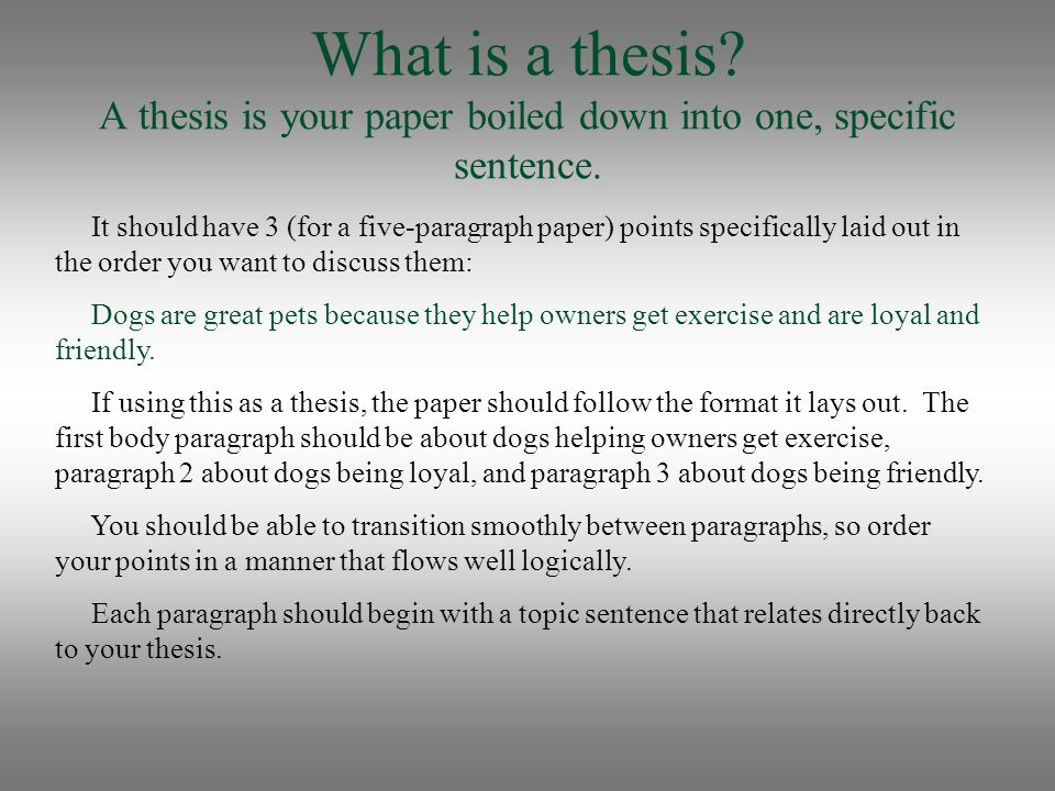 What Is A Thesis Sentence