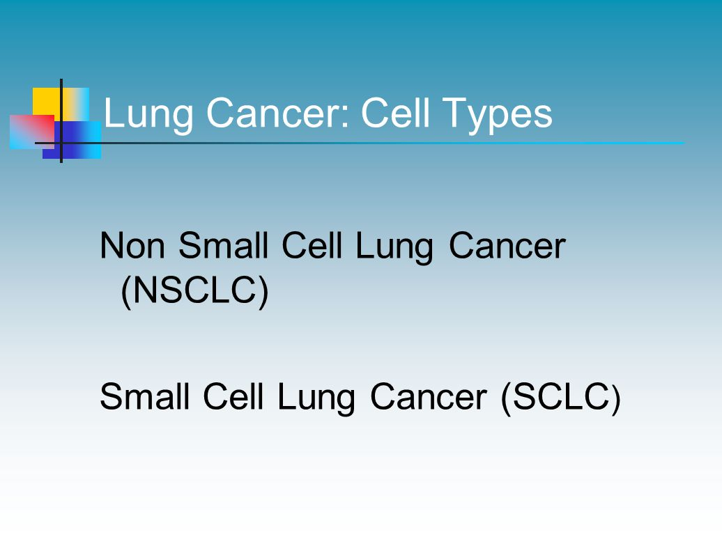 Lung Cancer: Cell Types Non Small Cell Lung Cancer (NSCLC) Small Cell Lung Cancer (SCLC )