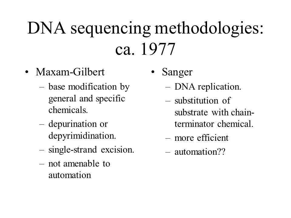 Dna sequencing importance the dna sequences making up any 6 dna sequencing malvernweather Images