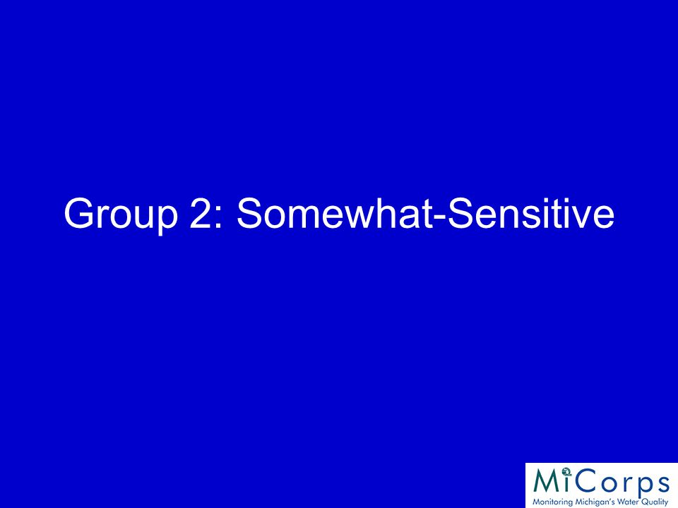 Group 2: Somewhat-Sensitive