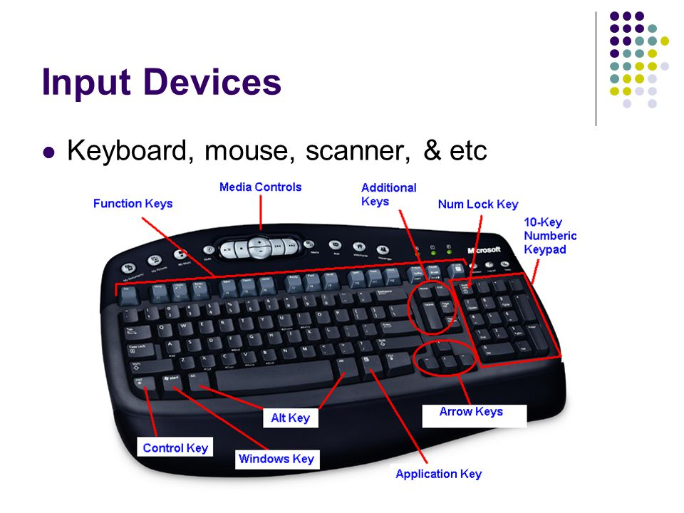 Input Devices Keyboard, mouse, scanner, & etc