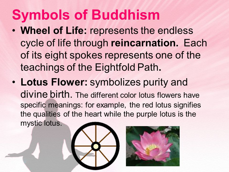 Symbols of Buddhism Wheel of Life: represents the endless cycle of life through reincarnation.