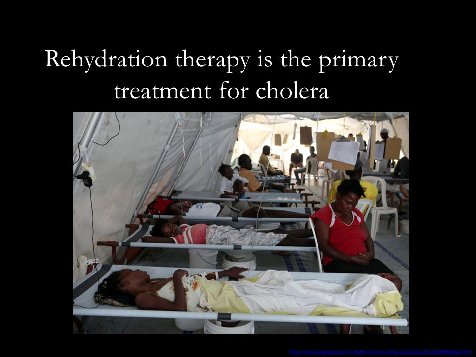 Rehydration therapy is the primary treatment for cholera