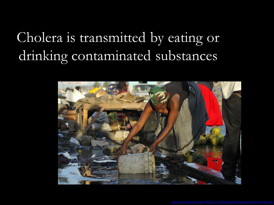 Cholera is transmitted by eating or drinking contaminated substances