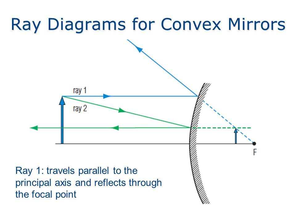 Ray Diagrams for Convex Mirrors Ray 1: travels parallel to the principal axis and reflects through the focal point