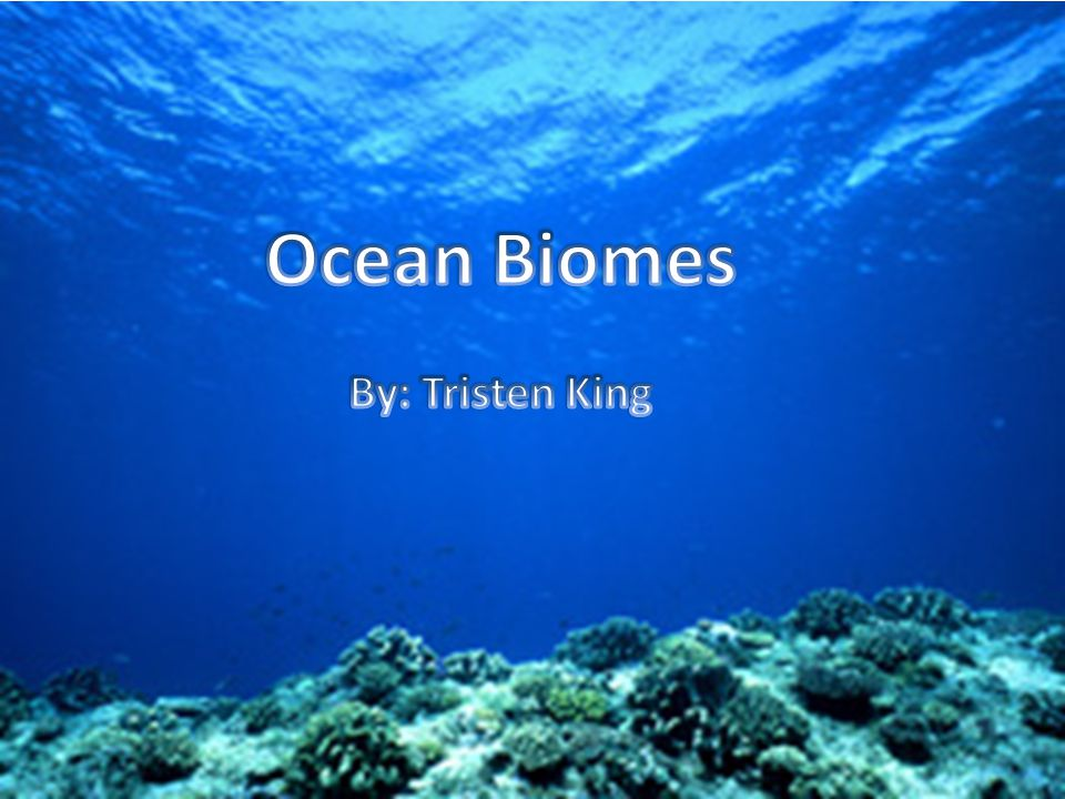 The Ocean biome is the worlds largest biome.Life in the ocean is very diverse.
