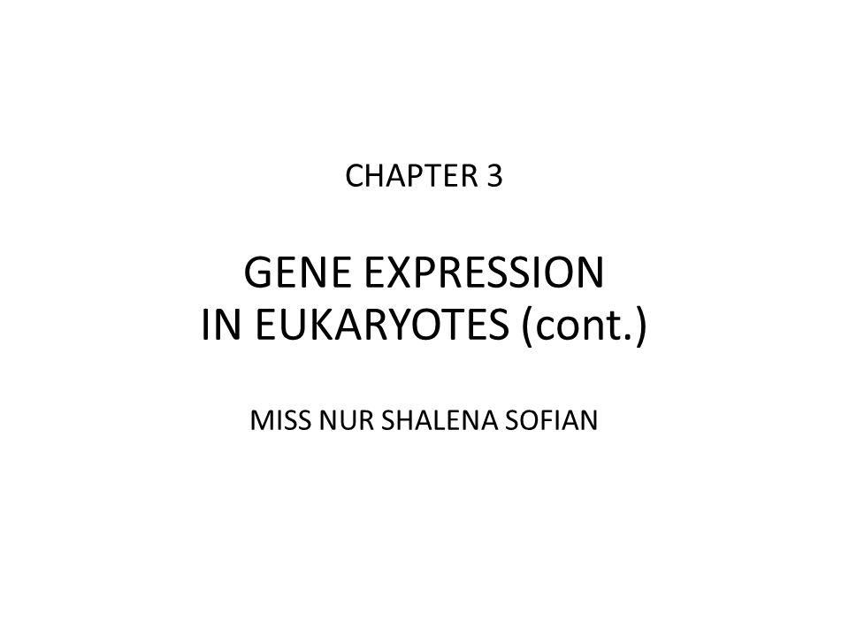 CHAPTER 3 GENE EXPRESSION IN EUKARYOTES (cont.) MISS NUR SHALENA SOFIAN