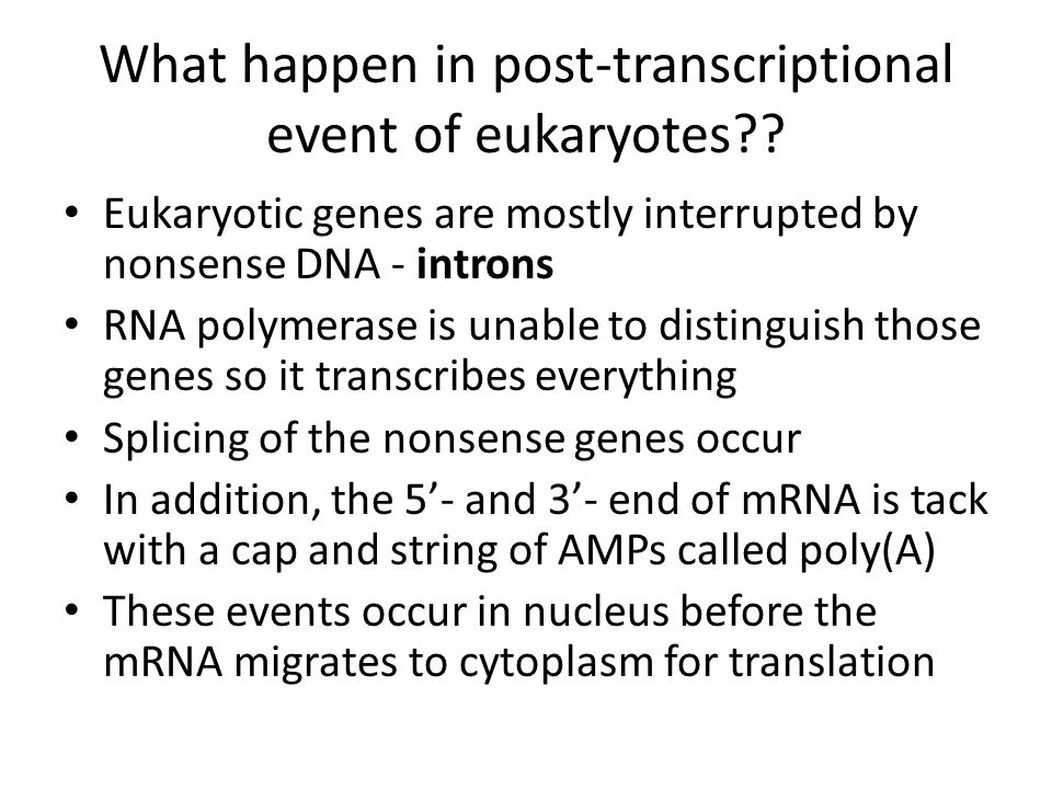 What happen in post-transcriptional event of eukaryotes .