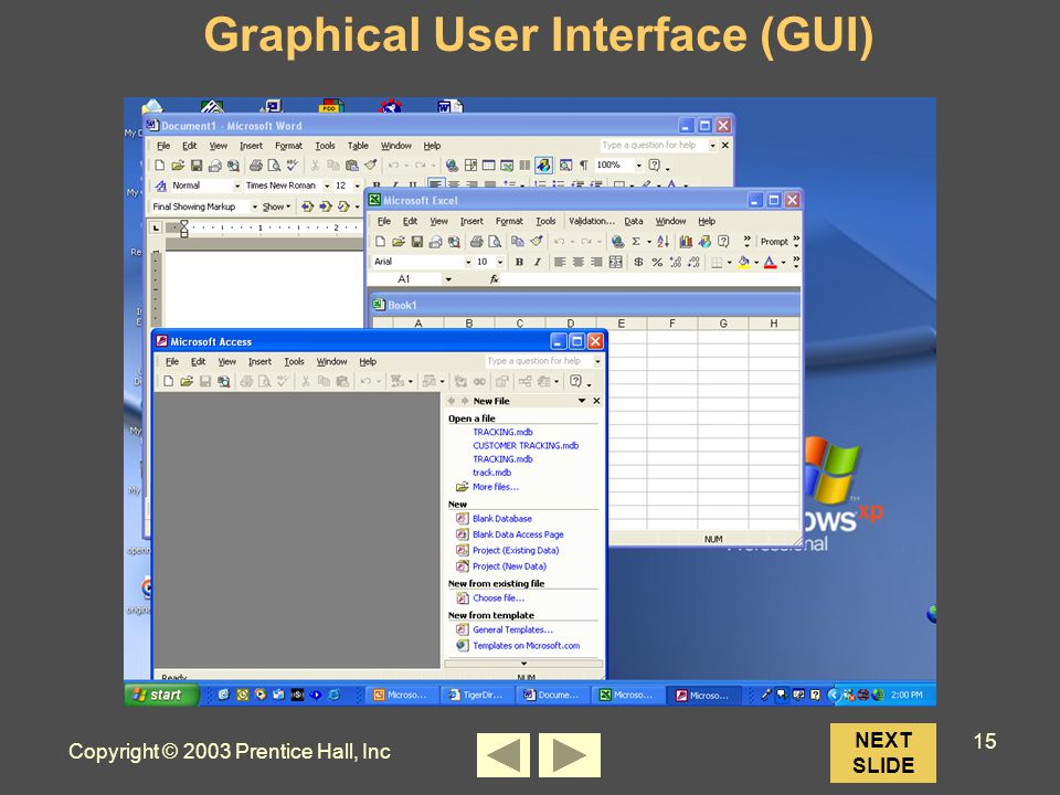 Copyright © 2003 Prentice Hall, Inc 15 NEXT SLIDE Graphical User Interface (GUI)