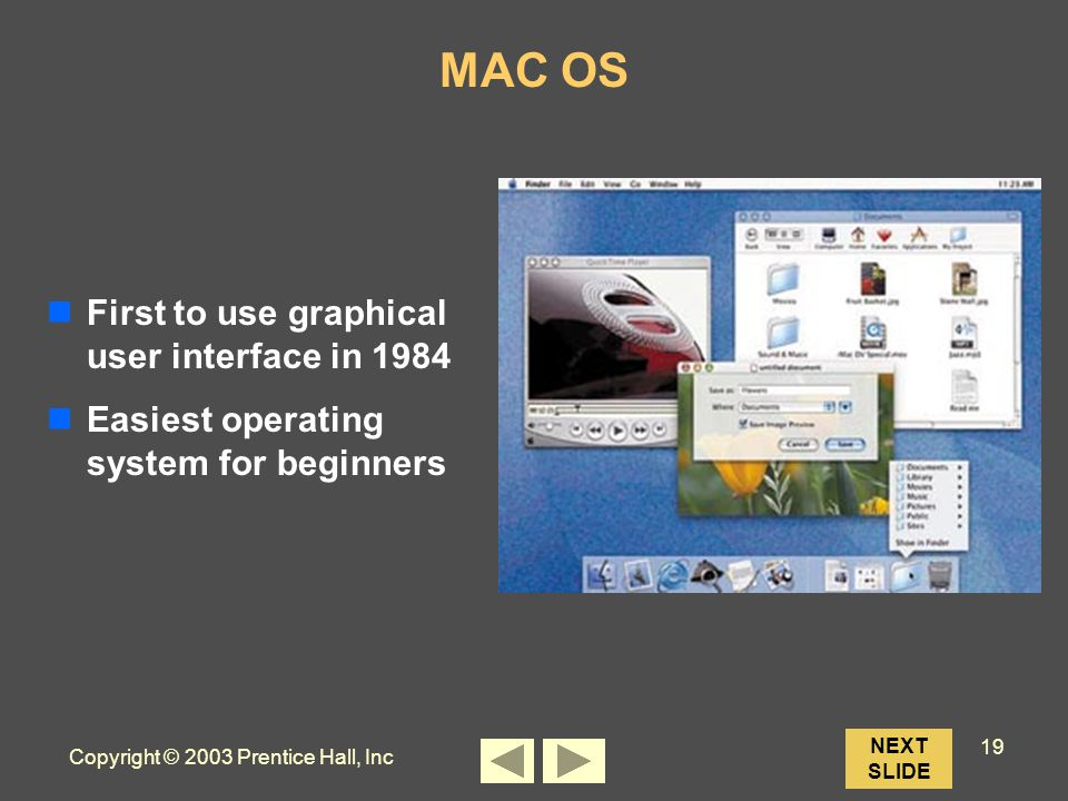 Copyright © 2003 Prentice Hall, Inc 19 NEXT SLIDE MAC OS First to use graphical user interface in 1984 Easiest operating system for beginners
