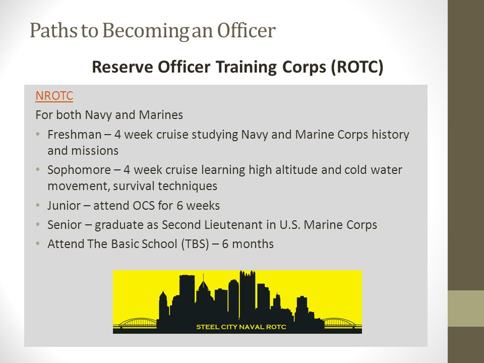 Can someone write a nrotc essay about why I want to be a naval officer?