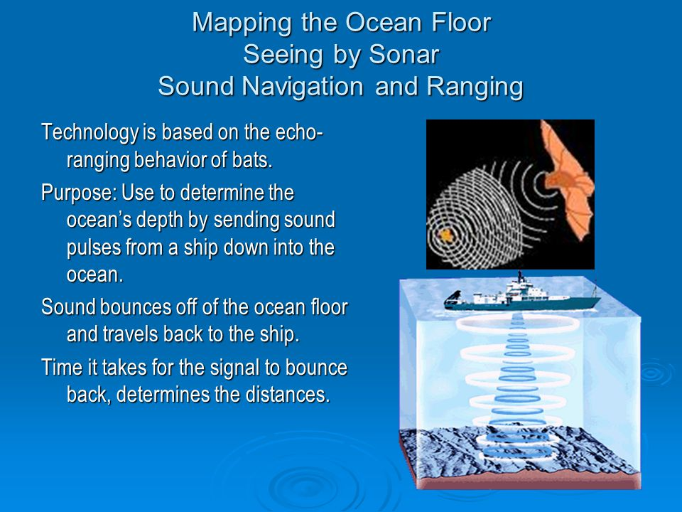 Mapping the Ocean Floor Seeing by Sonar Sound Navigation and Ranging Technology is based on the echo- ranging behavior of bats.
