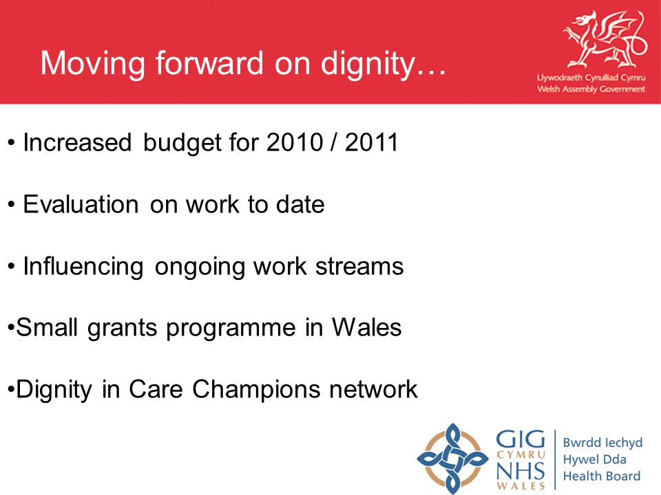 Increased budget for 2010 / 2011 Evaluation on work to date Influencing ongoing work streams Small grants programme in Wales Dignity in Care Champions network Moving forward on dignity…