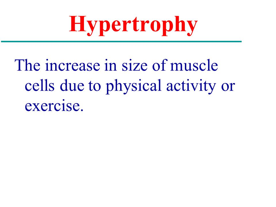 Hypertrophy The increase in size of muscle cells due to physical activity or exercise.