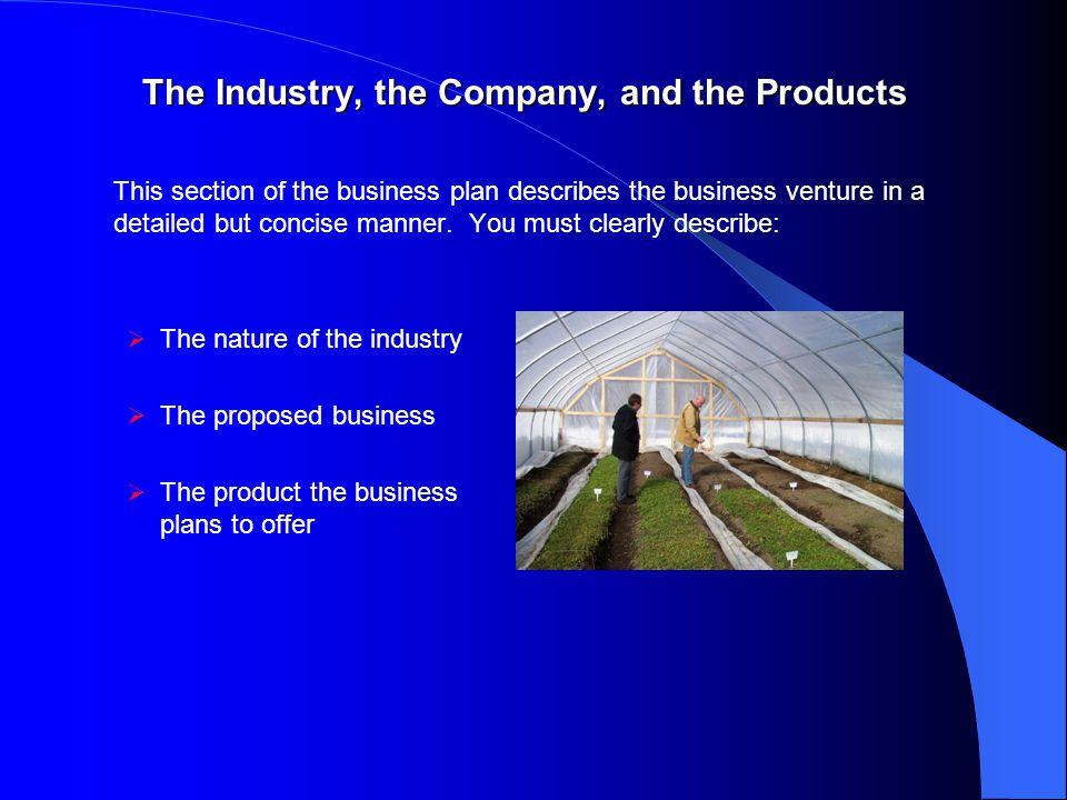 The Industry, the Company, and the Products This section of the business plan describes the business venture in a detailed but concise manner.