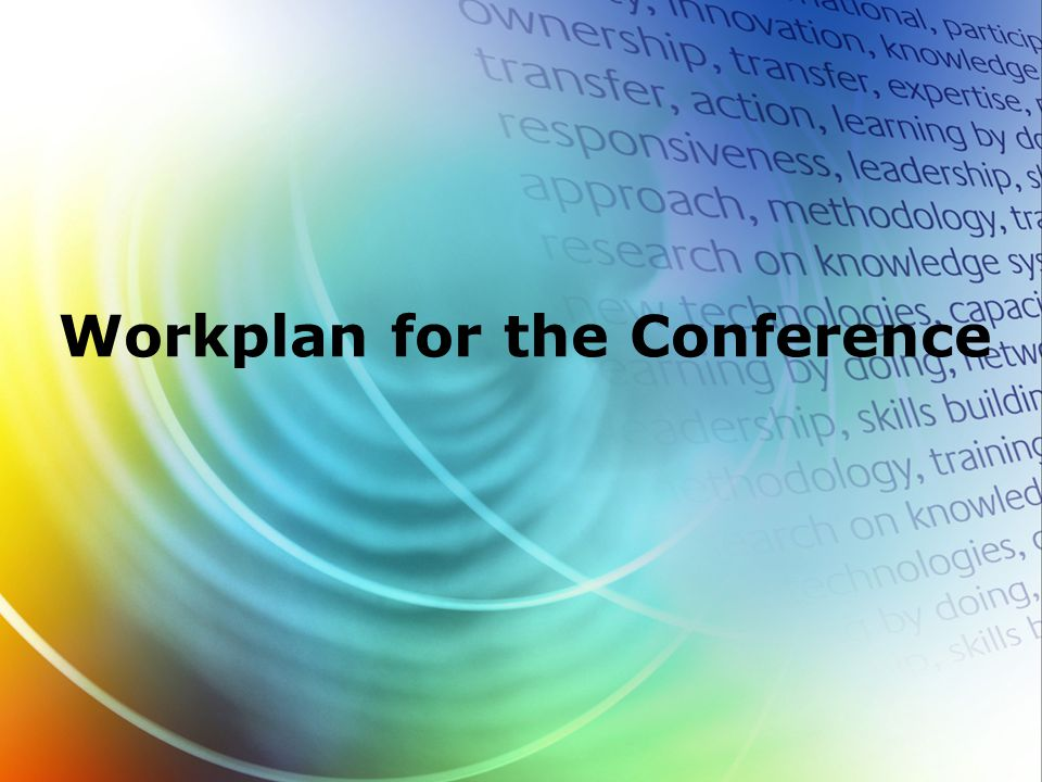Workplan for the Conference