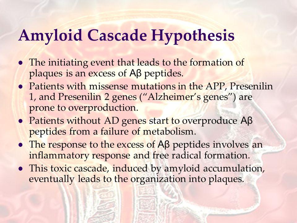 prednisone herpes