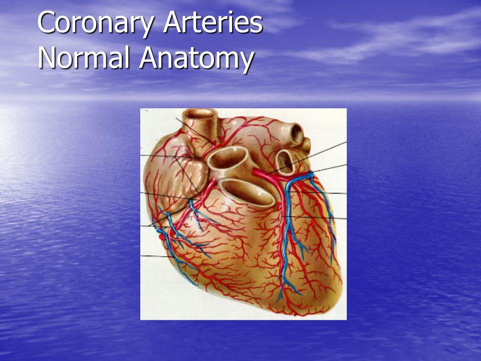Ischemic Heart Disease and Myocardial Infarction Pathophysiology of ...